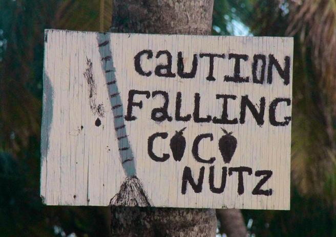 01 CoCo Nuts