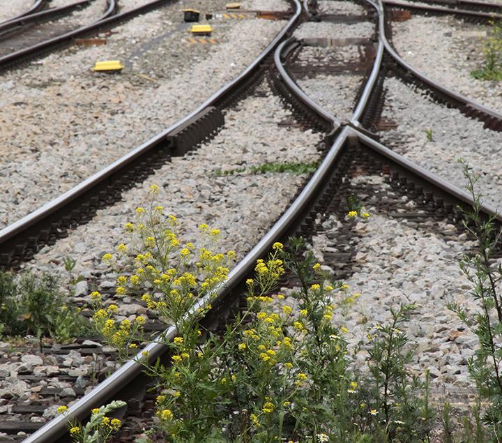 08 rails london